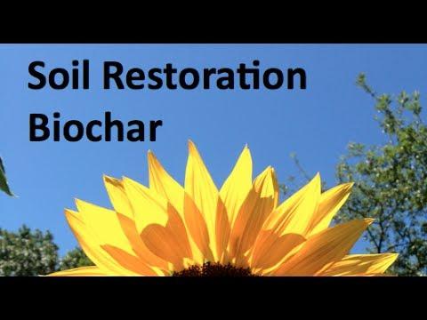 Terralogix: Biochar Soil Restoration