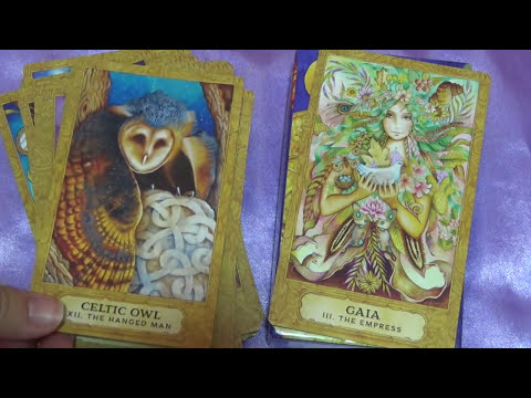 Chrysalis Tarot Review