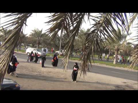 Bahrain: Protest organized by opposition, 1-mar-2013