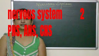 Types of Nervous system(CNS,.PNS,ANS)Explained