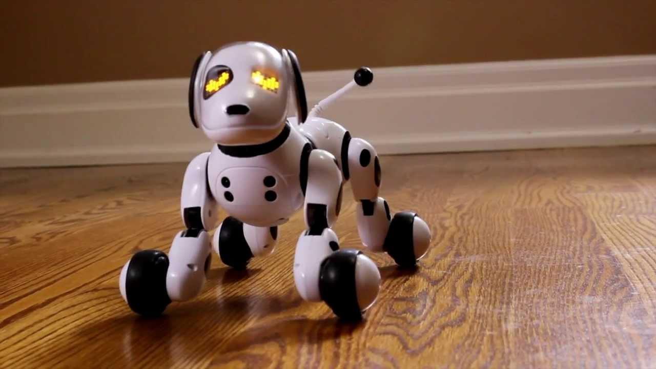 Robot For Big Boys Toys : Découvrez zoomer un robot chien bluffant de réalisme