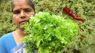 Fresh Coriander Rice Recipe | Prepared by my Mummy in my village | VILLAGE FOOD