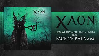 XAON - How We Become Ephemeral Birds (Lyric video)