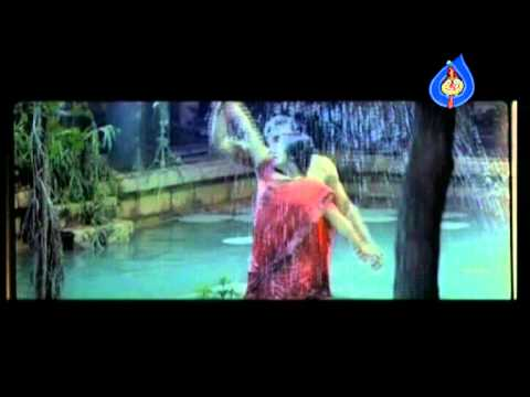 Dhanam Movie Promo Song 03- Sangeetha, Prem, Kota Srinivasa Rao video