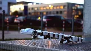 超リアルなサンショウウオロボットの画