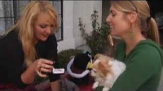 Watch Jaime Paxton 5 Years video