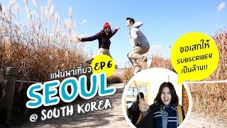 Vlog เที่ยวเกาหลีครั้งแรกด้วยตัวเอง : EP6. ทุ่งหญ้าHaneul Park คาเฟ่แฮรี่พอตเตอร์ //แฟนพาเที่ยว