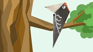 Origami for Kids. Woodpecker. Easy origami bird