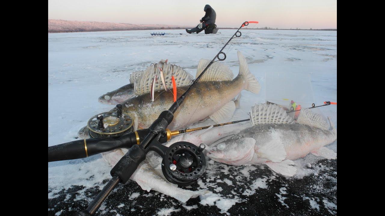 рыбалка ловля берша