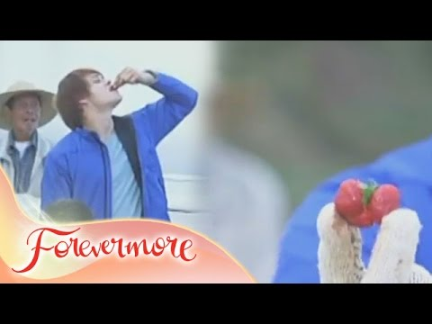 Forevermore: Strawberry of Love
