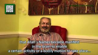 Brain Mechanics, The Quantum Potential And The Quran by Ahmed Hulusi