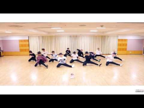Seventeen 세븐틴 - Don't Wanna Cry 울고 싶지 않아 (dance practice)