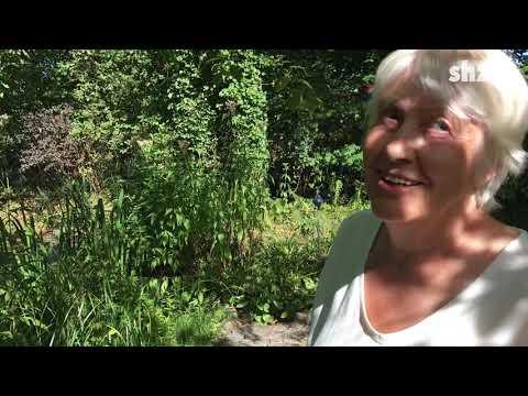 Rehe im Garten – was tun?