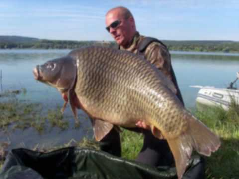 Big carp fishing youtube for Big 5 fishing license