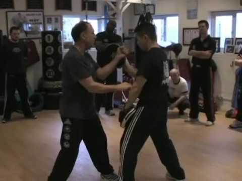 Chelmsford, UK 2009 - Bruce Lee's Jun Fan - JKD: Ping Chuie/Gua Chuie Series (with focus mitts) Image 1