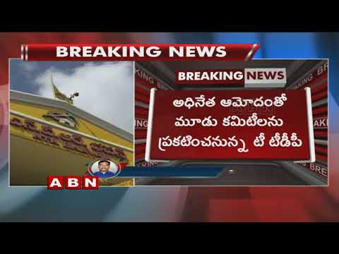T-TDP Leaders meets CM Chandrababu over 3 T-TDP Committees Approval  For Telangana Polls
