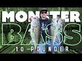 Lagu How to Fish for MONSTER Bass on a River (10lb Bass & 25lb Bag)
