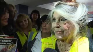 Brigitte Bardot Invitée Surprise D 39 Une Réunion De Gilets Jaunes Dans Le Var