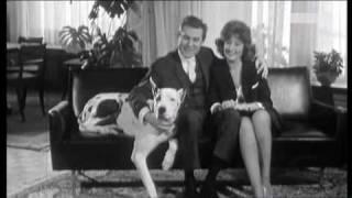 Willy Hagara - In Jedem Arm Ein Schönes Mädchen 1963