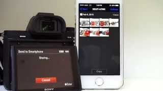 Wirelessly Transfer Photos from SONY A7M2 to iPhone 5s (PlayMemories Mobile)