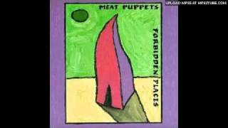 Watch Meat Puppets This Day video