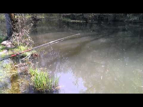 Les textes des chansons sur la pêche prikolnye