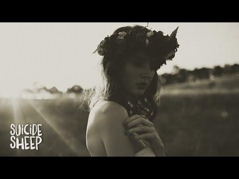Skott Amelia music videos 2016