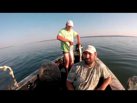 рыбалка на днепре на судака 2016
