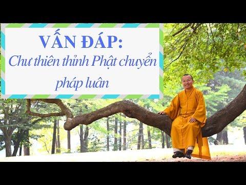 Vấn đáp: Chư thiên thỉnh Phật chuyển pháp luân