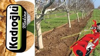 ✔️ BEST INTERROW TILLER FOR YOUNG WALNUT TREES