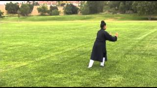 Wudang Five Animal Qi Gong (Turtle) 武當五行氣功(龜)
