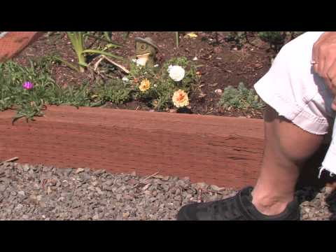 Flower plant garden care how to edge a flower bed with wood youtube for Pressure treated wood for garden