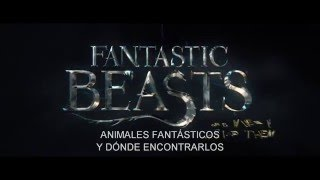 ANIMALES FANTÁSTICOS Y DÓNDE ENCONTRARLOS - Trailer 1 - Oficial Warner Bros. Pictures