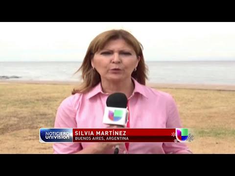 Peces carnívoros vuelven a atacar en Argentina -- Noticiero Univisión