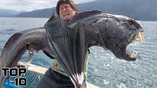 Top 10 Creepiest Creatures Caught On Camera