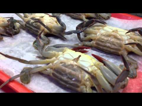 Live soft shell crabs at Reading Terminal Market