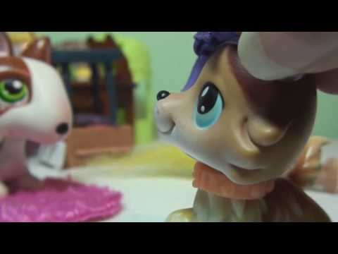 Littlest Pet Shop: Risa QUITS...?!?! Thank you for 40,000+ Subscribers!