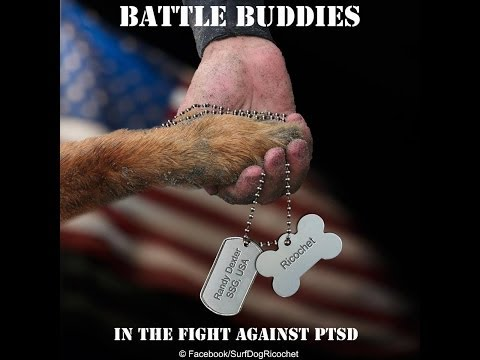 Ricochet & Randy PTSD Battle Buddy Initiative