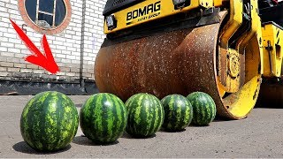 EXPERIMENT: ROAD ROLLER VS 5 WATERMELON