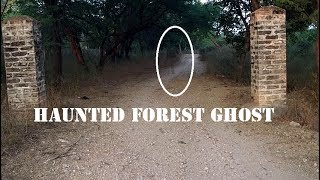 Real Ghost caught in Jungle  | Haunted forest | Scary ghost encounter