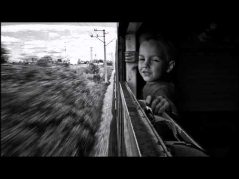 Guillemots - Redwings