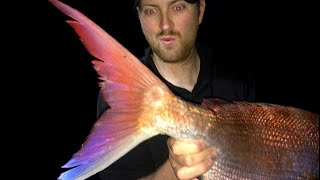 HOW TO HUNT BIG RED SNAPPER - YouFishTV