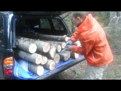 Lumber jacket xylophone!!!