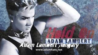 Watch Adam Lambert Hold On video