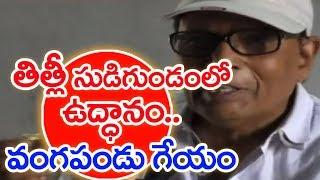 Prajaa kavi Vangapandu Prasada Rao Dedicates Folk Song To Save Srikakulam | Titli Cyclone |MahaaNews