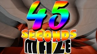 45 SECONDS MAZE (minecraft timed parkour)
