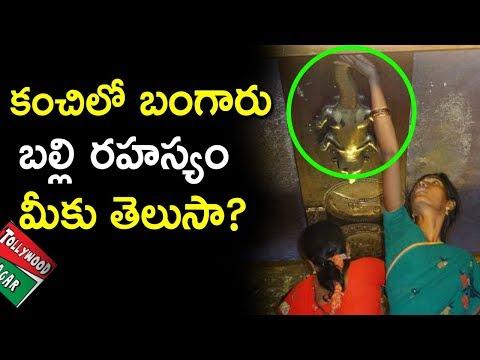 Kanchi Golden Lizard Story In Telugu | Varadharaja Perumal Temple History | Tollywood Nagar