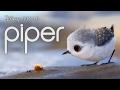 Piper Short Film By Disney Pixar