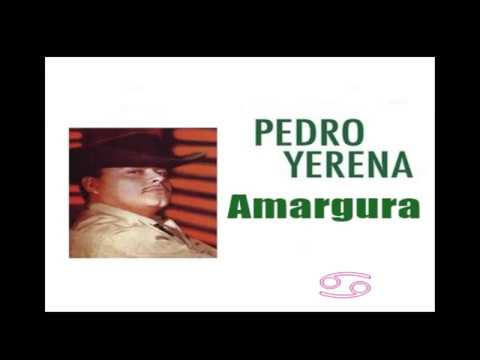 Pedro Yerena Amargura