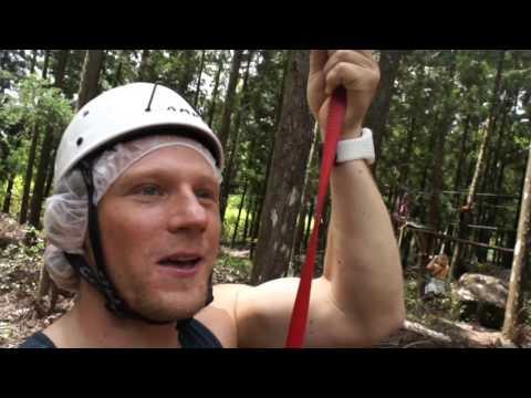 Лесные развлечения. Прямое включение 24 октября 2015